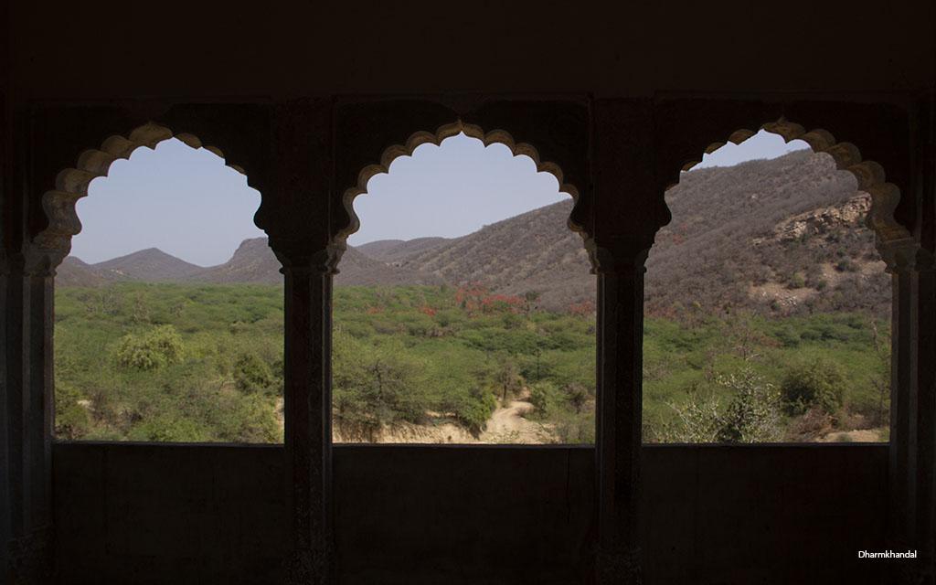 रामगढ विषधारी अभयारण्य–राजस्थान के बाघों का अनौपचारिक आशियाना