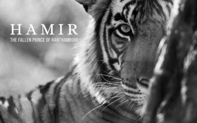 Hamir – The Fallen Prince of Ranthambhore