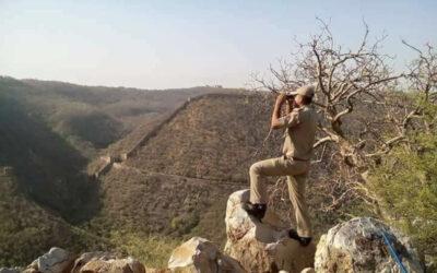 वन रक्षक 1:    जुनून और जज़्बे की मिसाल: अभिषेक सिंह शेखावत